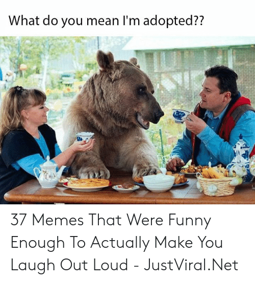 Funny, Memes, and Mean: What do you mean I'm adopted?? 37 Memes That Were Funny Enough To Actually Make You Laugh Out Loud - JustViral.Net