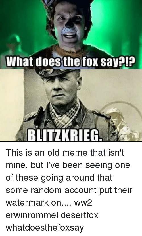 The Fox Say: What does the fox say!?  BLITZKRIEG This is an old meme that isn't mine, but I've been seeing one of these going around that some random account put their watermark on.... ww2 erwinrommel desertfox whatdoesthefoxsay
