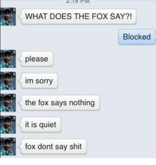 The Fox Say: WHAT DOES THE FOX SAY?!  Blocked  please  im sorry  the fox says nothing  it is quiet  fox dont say shit