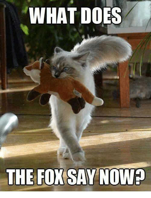 The Fox Say: WHAT DOES  THE FOX SAY NOWP