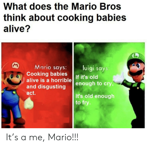 mario bros: What does the Mario Bros  think about cooking babies  alive?  M  Mario says:  Cooking babies  alive is a horrible  and disgusting  luigi says:  If it's old  enough to cry,  act.  It's old enough  to fry. It's a me, Mario!!!
