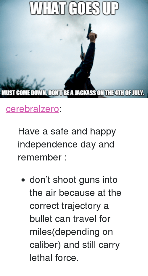 "trajectory: WHAT GOES UP  MUST COME DOWNDONT BEA JACKASS ON THE4TH OFJULY <p><a href=""http://cerebralzero.tumblr.com/post/90569795397/have-a-safe-and-happy-independence-day-and"" class=""tumblr_blog"">cerebralzero</a>:</p><blockquote> <p>Have a safe and happy independence day and remember :</p> <ul><li>don't shoot guns into the air because at the correct trajectory a bullet can travel for miles(depending on caliber) and still carry lethal force.</li> </ul></blockquote>"