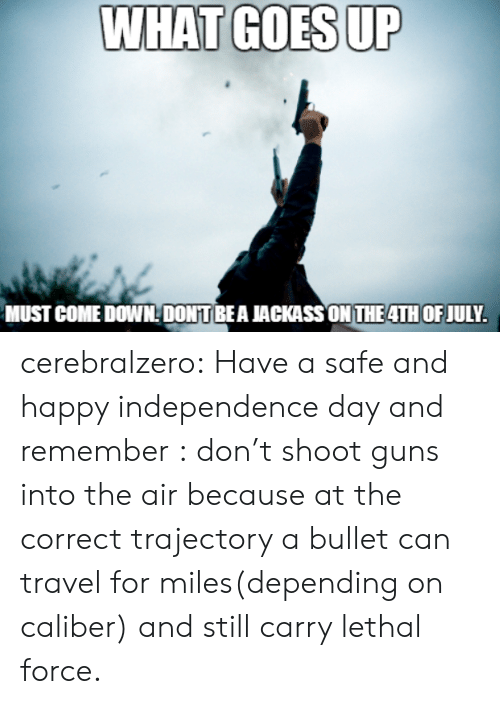 Guns, Independence Day, and Tumblr: WHAT GOES UP  MUST COME DOWNDONTBEA JACKASSON THE4TH OF JULY. cerebralzero:  Have a safe and happy independence day and remember : don't shoot guns into the air because at the correct trajectory a bullet can travel for miles(depending on caliber) and still carry lethal force.
