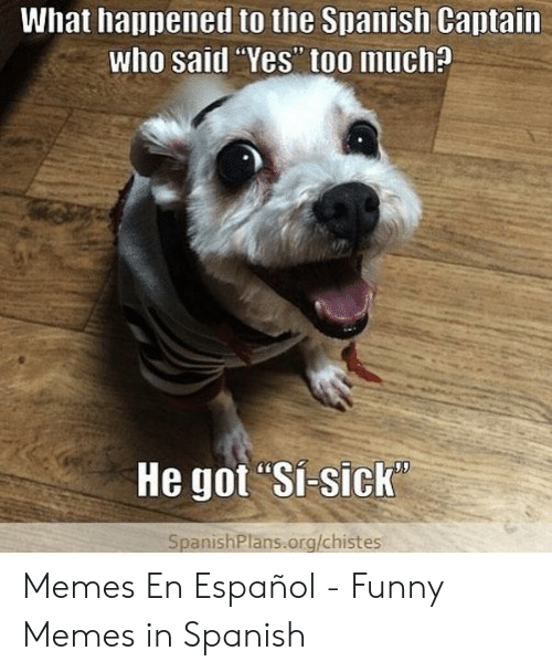 """Funny, Memes, and Spanish: What happened to the Spanish Captain  who said Yes"""" too much?  He got Si-sick  SpanishPlans.org/chistes Memes En Español - Funny Memes in Spanish"""