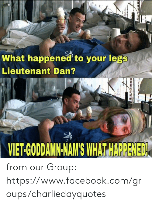 Facebook, Memes, and facebook.com: What happened to your legs  Lieutenant Dan?  VIET-GODDAMN-NAM'S WHAT HAPPENED from our Group: https://www.facebook.com/groups/charliedayquotes