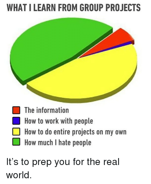 Memes, Work, and How To: WHAT I LEARN FROM GROUP PROJECTS  The information  How to work with people  How to do entire projects on my own  OHow much I hate people It's to prep you for the real world.