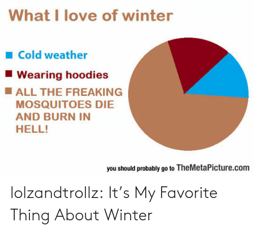 hoodies: What I love of winter  Cold weather  Wearing hoodies  ALL THE FREAKING  MOSQUITOES DIE  AND BURN IN  HELL!  you should probably go to TheMetaPicture.com lolzandtrollz:  It's My Favorite Thing About Winter