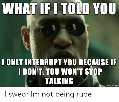 Rude, Imgur, and You: WHAT IF I TOLD YOU  I ONLY INTERRUPT YOU BECAUSE I  I DON'T, YOU WON'T STOP  TALKING  made on imgur I swear Im not being rude