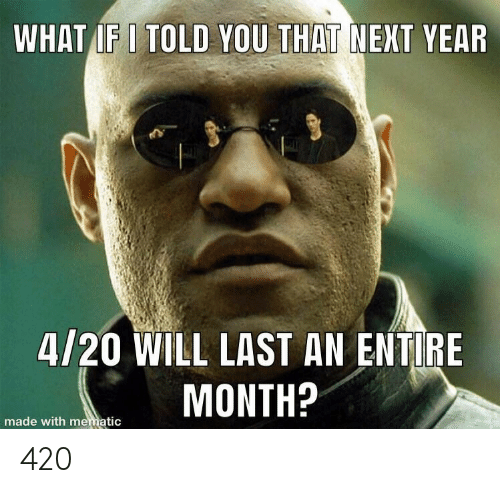 Next Year: WHAT IF I TOLD YOU THAT NEXT YEAR  4/20 WILL LAST AN ENTIRE  MONTH?  made with mematic 420