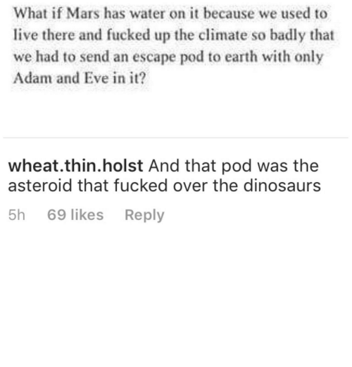 asteroid: What if Mars has water on it because we used to  live there and fucked up the climate so badly that  we had to send an escape pod to earth with only  Adam and Eve in it?  wheat.thin.holst And that pod was the  asteroid that fucked over the dinosaurs  5h 69 likes Reply