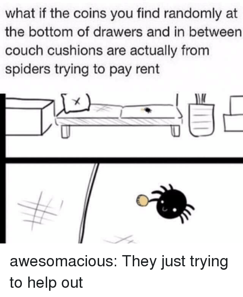 drawers: what if the coins you find randomly at  the bottom of drawers and in between  couch cushions are actually from  spiders trying to pay rent awesomacious:  They just trying to help out