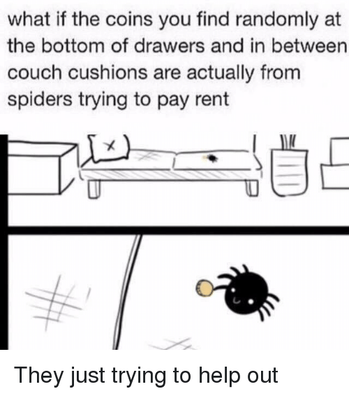 drawers: what if the coins you find randomly at  the bottom of drawers and in between  couch cushions are actually from  spiders trying to pay rent They just trying to help out