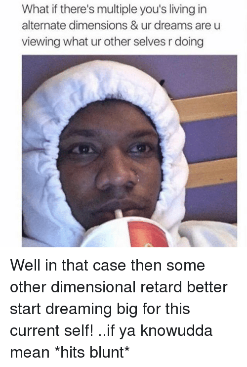 Well In That Case: What if there's multiple you's living in  alternate dimensions & ur dreams are u  viewing what ur other selves rdoing Well in that case then some other dimensional retard better start dreaming big for this current self! ..if ya knowudda mean *hits blunt*