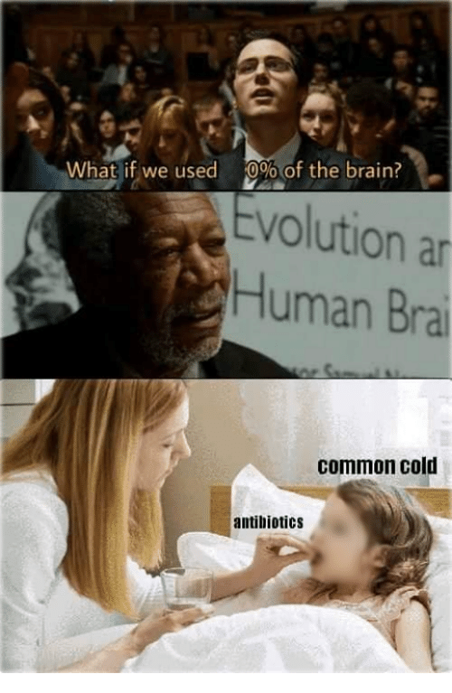Memes, Brain, and Common: What if we used  0%of the brain?  evolution an  Human Bra  common cold  antibiotics