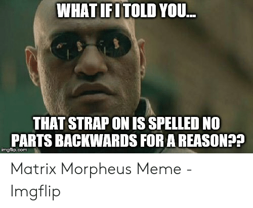 Morpheus Meme: WHAT IFITOLD YOU..  THAT STRAP ON IS SPELLED NO  PARTS BACKWARDS FOR A REASON??  imgflip.com Matrix Morpheus Meme - Imgflip