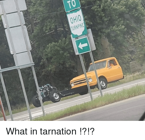 Funny, What, and Tarnation: What in tarnation !?!?