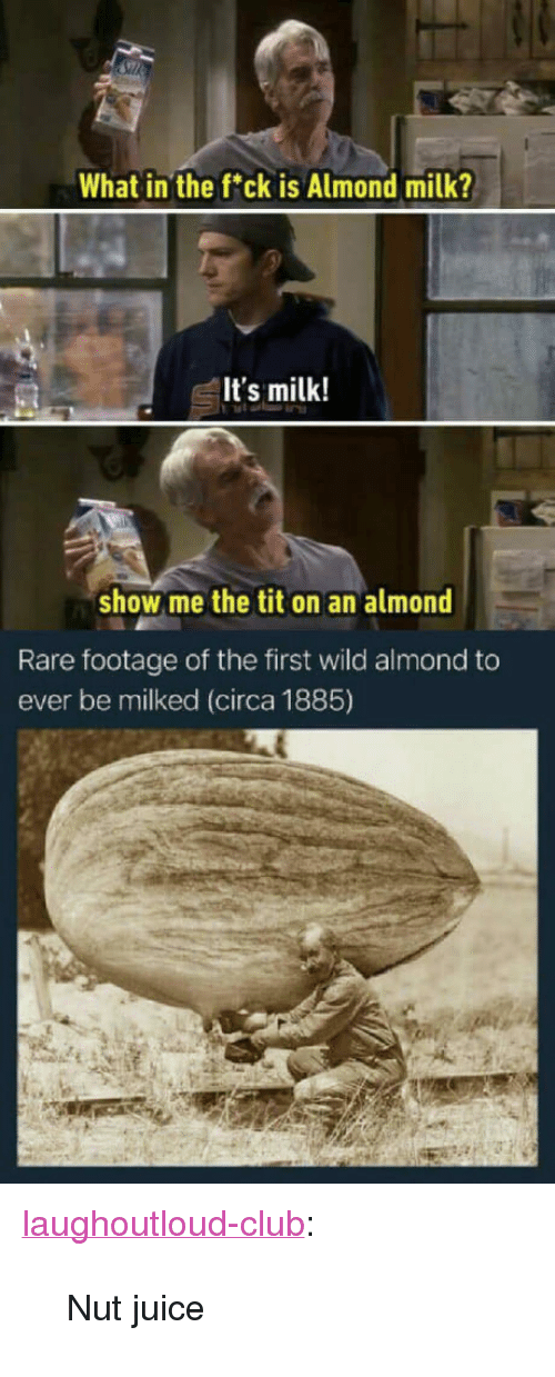"""rare footage: What in the fck is Almond milk?  It's milk!  show me the tit on an almond  Rare footage of the first wild almond to  ever be milked (circa 1885) <p><a href=""""http://laughoutloud-club.tumblr.com/post/163921272813/nut-juice"""" class=""""tumblr_blog"""">laughoutloud-club</a>:</p>  <blockquote><p>Nut juice</p></blockquote>"""