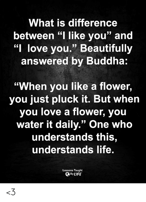 "Life, Love, and Memes: What is difference  between ""I like you"" and  ""I love you."" Beautifully  answered by Buddha:  ""When you like a flower,  you just pluck it. But when  you love a flower, you  water it daily."" One who  understands this,  understands life.  Lessons Taught  By LIFE <3"
