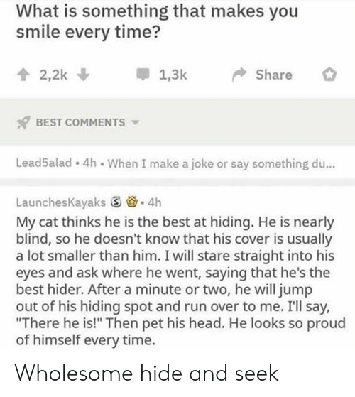 "Cover: What is something that makes you  smile every time?  會2,2k  *  1.3k-> Share  BEST COMMENTS  Lead5alad 4h When I make a joke or say something du...  LaunchesKayaks ⑤  . 4h  My cat thinks he is the best at hiding. He is nearly  blind, so he doesn't know that his cover is usually  a lot smaller than him. I will stare straight into his  eyes and ask where he went, saying that he's the  best hider. After a minute or two, he will jump  out of his hiding spot and run over to me. I'll say,  ""There he is!"" Then pet his head. He looks so proud  of himself every time. Wholesome hide and seek"