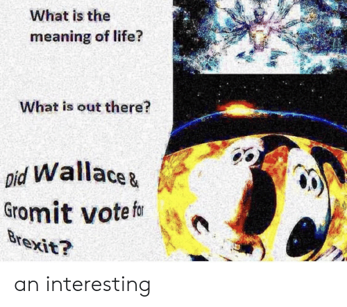 meaning of life: What is the  14  meaning of life?  What is out there?  pid Wallacez  Gromit votef an interesting