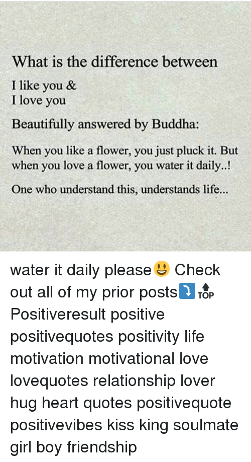 you beauty: What is the difference between  I like you &  I love you  Beautifully answered by Buddha  When you like a flower, you just pluck it. But  when you love a flower, you water it daily..!  One who understand this, understands life... water it daily please😃 Check out all of my prior posts⤵🔝 Positiveresult positive positivequotes positivity life motivation motivational love lovequotes relationship lover hug heart quotes positivequote positivevibes kiss king soulmate girl boy friendship