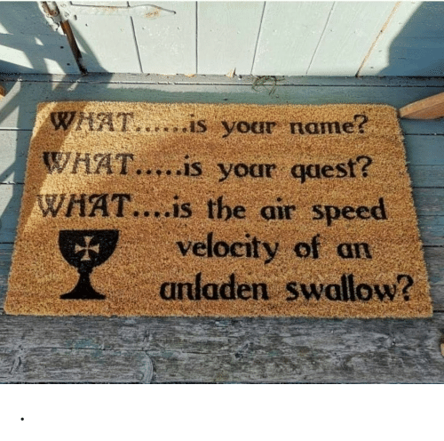 What Is, Air, and Speed: WHAT,..is your name?  WHAT.....is your qaest?  WHAT....is the air speed  velocity of an  anladen swallow? .