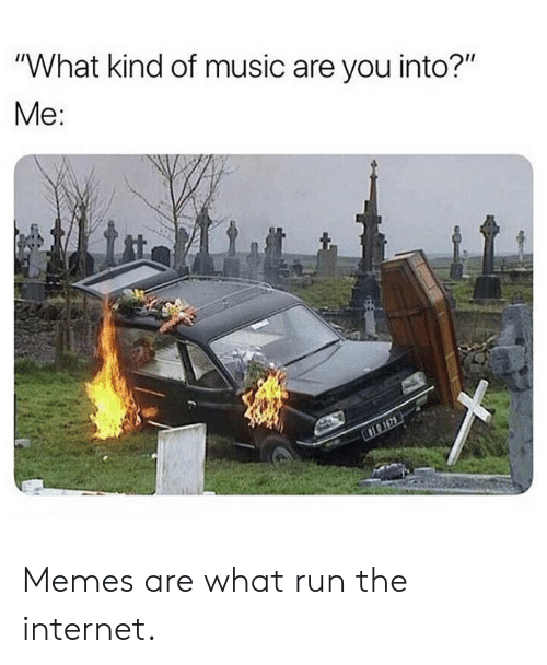 "Internet, Memes, and Music: ""What kind of music are you into?""  Me: Memes are what run the internet."