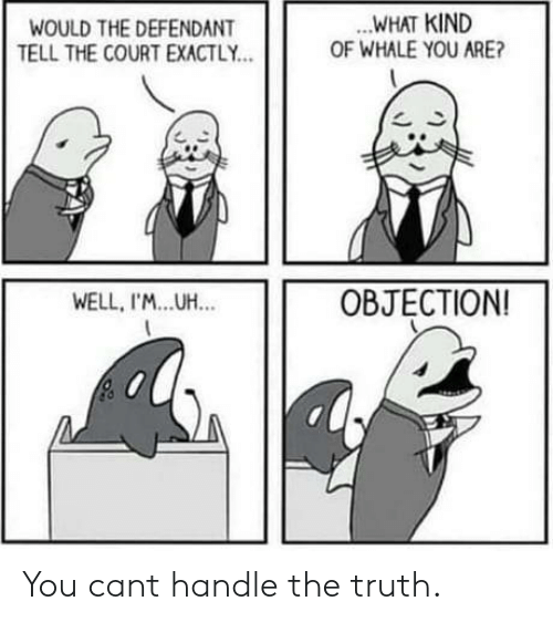 Truth, Whale, and You: .WHAT KIND  OF WHALE YOU ARE?  WOULD THE DEFENDANT  TELL THE COURT EXACTLY.  乙、  WELL, I'M...UH.  OBJECTION You cant handle the truth.