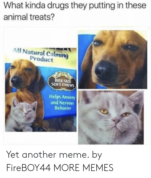 Dank, Drugs, and Meme: What kinda drugs they putting in these  animal treats?  All Natural Calming  Product  BITE SIZE  SOFT CHEWS  Helps Anxiety  and Nervous  Behavior Yet another meme. by FireBOY44 MORE MEMES