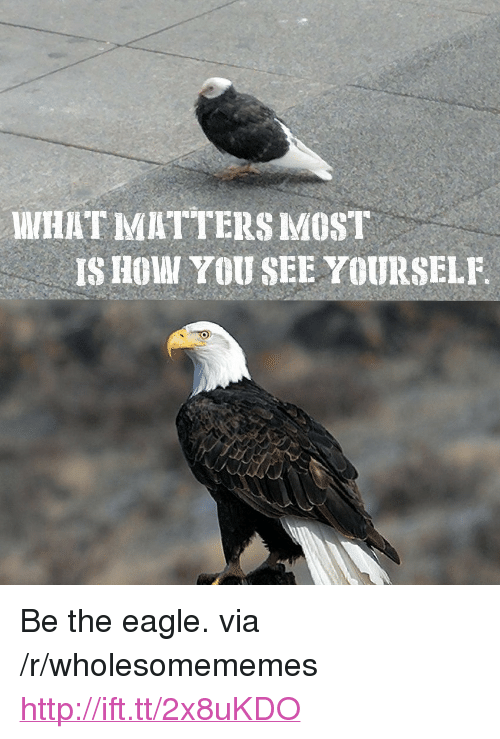 "the eagle: WHAT MATTERS MOST  IS HOWI YOU SEE YOURSELF <p>Be the eagle. via /r/wholesomememes <a href=""http://ift.tt/2x8uKDO"">http://ift.tt/2x8uKDO</a></p>"