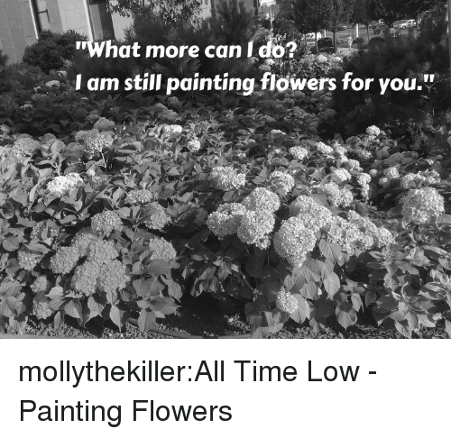 """all time low: What more can I do?  am still painting flowers for you."""" mollythekiller:All Time Low - Painting Flowers"""