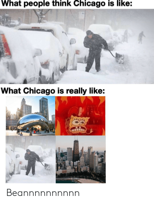Like What: What people think Chicago is like:  What Chicago is really like: Beannnnnnnnnn