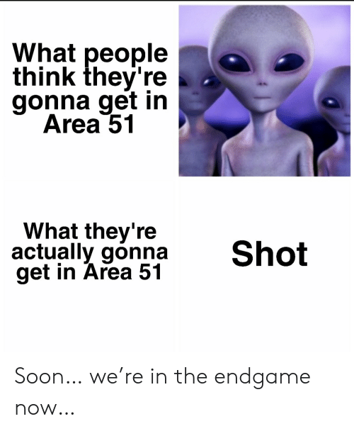 What People Think: What people  think they're  gonna get in  Area 51  What they're  actually gonna  get in Area 51  Shot Soon… we're in the endgame now…