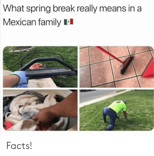 Facts, Family, and Memes: What spring break really means in a  Mexican family II Facts!