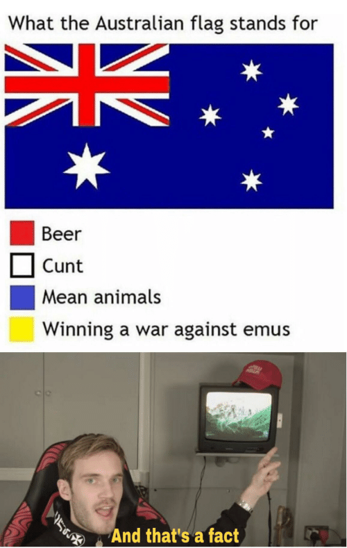 Cunt: What the Australian flag stands for  Beer  Cunt  Mean animals  Winning a war against emus  And that's a fact