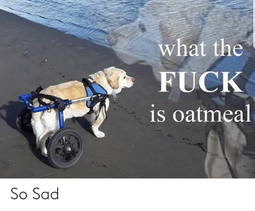 Fuck, Dank Memes, and Sad: what the  FUCK  is oatmeal So Sad