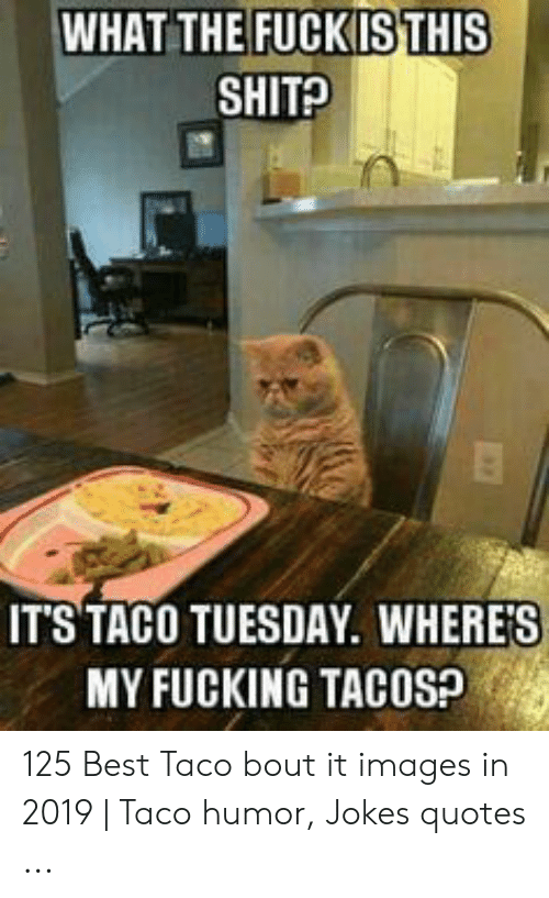 Taco Humor: WHAT THE FUCKISTHIS  SHIT?  IT'S TACO TUESDAY. WHERE'S  MY FUCKING TACOSP 125 Best Taco bout it images in 2019 | Taco humor, Jokes quotes ...