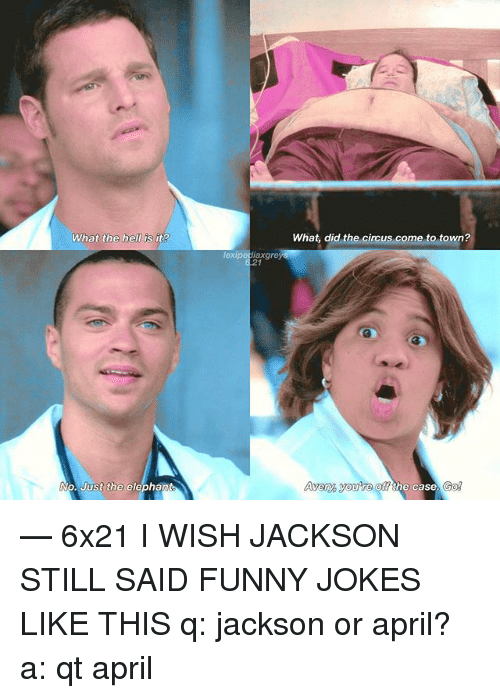 funny jokes: What the hell is it?  21  What, did the circus come to town?  Avery you're  off the case. Go — 6x21 I WISH JACKSON STILL SAID FUNNY JOKES LIKE THIS q: jackson or april? a: qt april♡