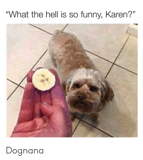 """Funny, Hell, and What: """"What the hell is so funny, Karen?"""" Dognana"""