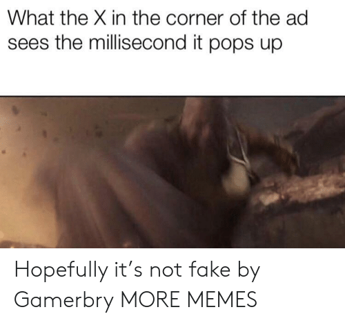 In The Corner: What the X in the corner of the ad  sees the millisecond it pops up Hopefully it's not fake by Gamerbry MORE MEMES