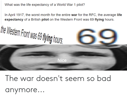 hous: What was the life expectancy of a World War 1 pilot?  In April 1917, the worst month for the entire war for the RFC, the average life  expectancy of a British pilot on the Western Front was 69 flying hours.  the Westem Front was 69 flying hous.  69  Nice The war doesn't seem so bad anymore...