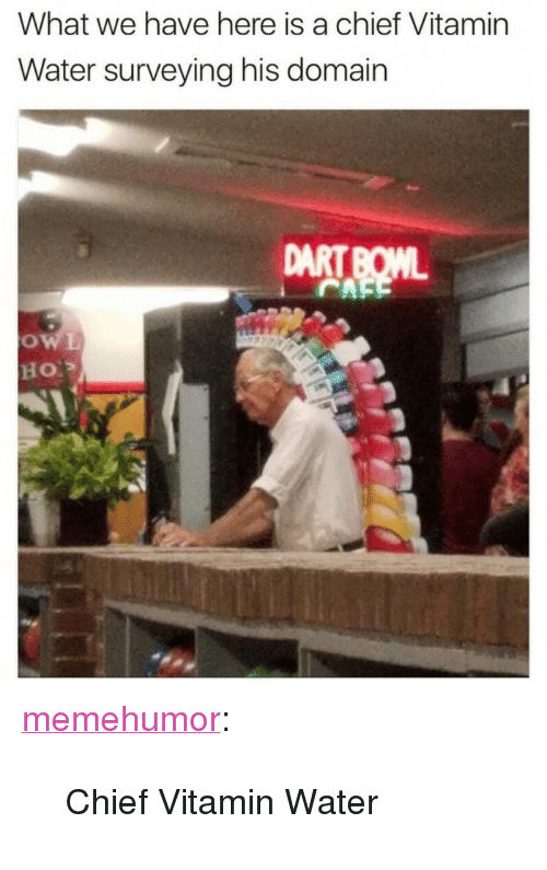 "Tumblr, Blog, and Http: What we have here is a chief Vitamin  Water surveying his domain  DART BOML <p><a href=""http://memehumor.net/post/165935432496/chief-vitamin-water"" class=""tumblr_blog"">memehumor</a>:</p>  <blockquote><p>Chief Vitamin Water</p></blockquote>"
