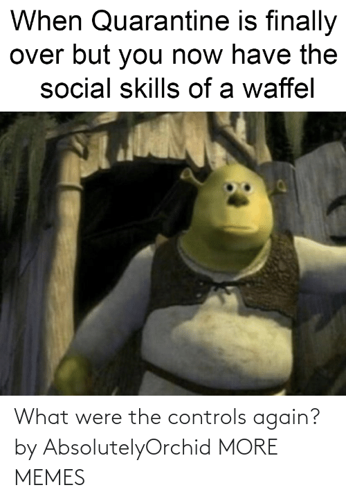 what: What were the controls again? by AbsolutelyOrchid MORE MEMES