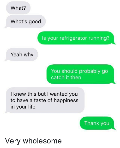 whats good: What?  What's good  Is your refrigerator running?  Yeah why  You should probably go  catch it then  I knew this but I wanted you  to have a taste of happiness  in your life  Thank you Very wholesome