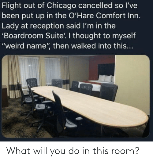 you: What will you do in this room?