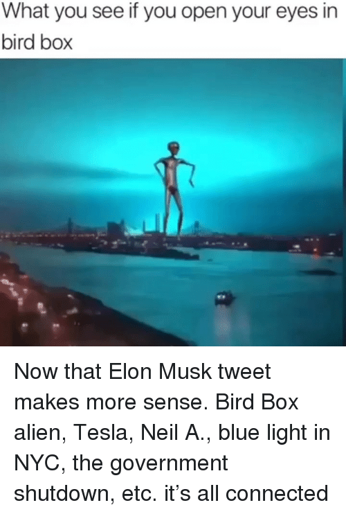 Memes, Alien, and Blue: What you see if you open your eyes in  bird box Now that Elon Musk tweet makes more sense. Bird Box alien, Tesla, Neil A., blue light in NYC, the government shutdown, etc. it's all connected