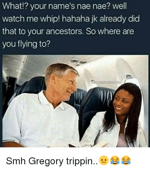 Memes, Nae Nae, and Smh: What!? your name's nae nae? well  watch me whip! hahaha jk already did  that to your ancestors. So where are  you flying to? Smh Gregory trippin..😐😂😂