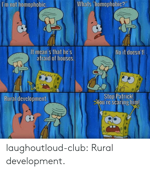 Club, Tumblr, and Blog: Whats homophobic?  I'm not homophobic  It mean's that he's  afraid of houses  No it doesnt  Stop Patrick  Youi re scaring him  Rural development laughoutloud-club:  Rural development.