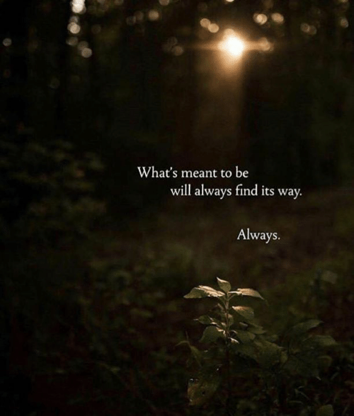 Will, Whats, and Always: What's meant to be  will always find its way.  Always.