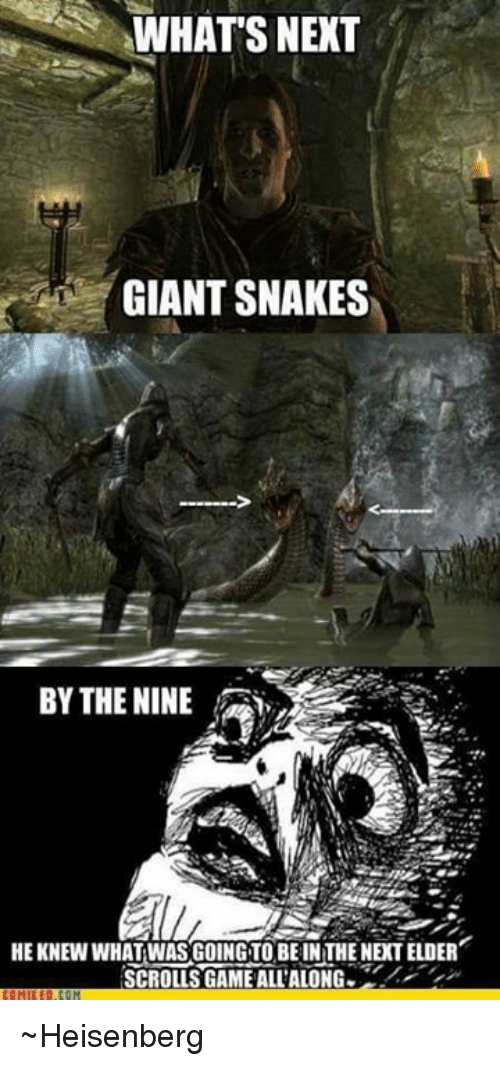 Heisenberger: WHATS NEXT  GIANT SNAKES  BY THE NINE  HEKNEW WHAT WAS GOING TO BE IN THE NEXT ELDER  SCROLLS GAME ALL'ALONG ~Heisenberg